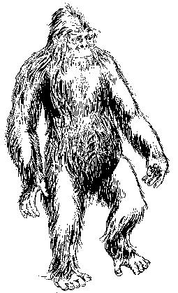 Trumbore Yeti